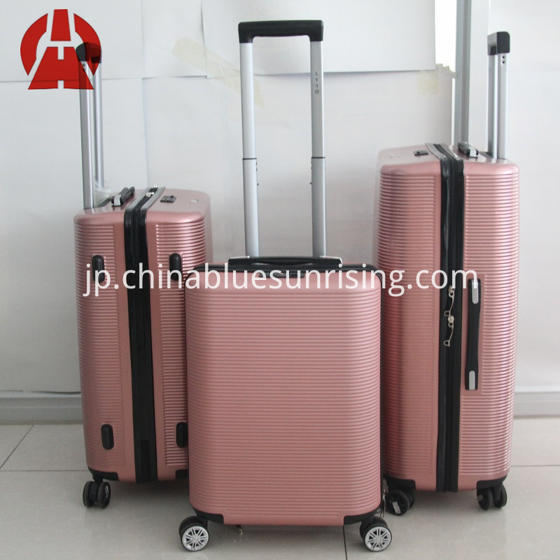 trolley bag luggage case