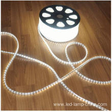 Factory Produce High Voltage AC110V LED Tape Light