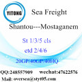 Shantou Port Sea Freight Shipping To Mostaganem