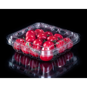 Small Plastic Fresh Fruit Packing Box