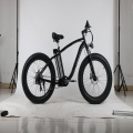 Whitebait snow bike price