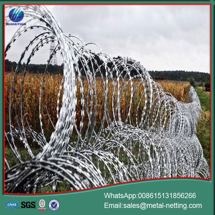 border anti climb razor wire