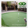 Turf Grass for Golf Course