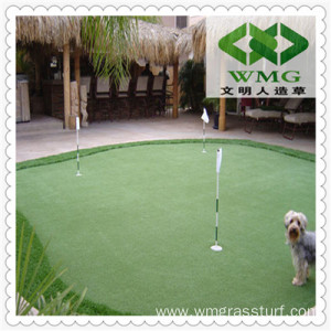 Grass Carpet for Golf Courses and Greens