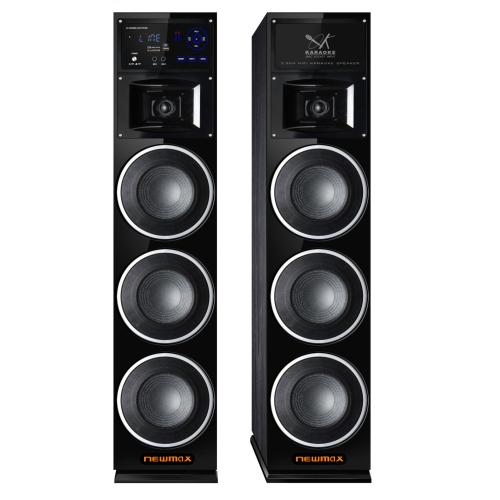 160W RMS Dual Tower Party Speaker