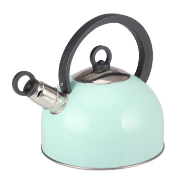 Stainless Steel Whistling Kettle with Handle in Green