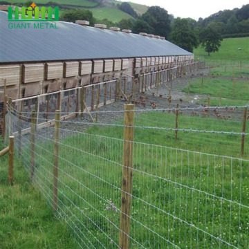 Cheaper Metal Galvanized Field Fence Farm Fence