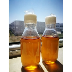 bulk sale raw natural and pure honey