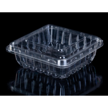 Blister Plastic Fruit Salad Box Packaging