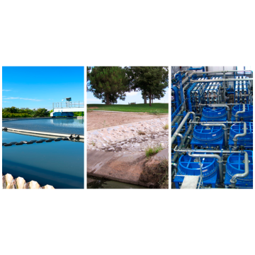 Zeolite for natural and waste waters