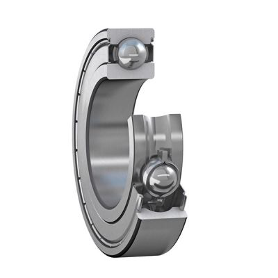 Iron Shielded Bearing