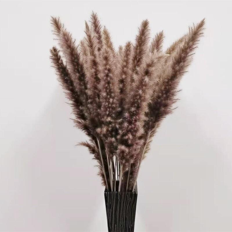 60cm Dried Pampas Grass Reed Flower Bouquet Natural Plants Home Decor Wedding Party Props Bulrush Flores Preservadas Decoration