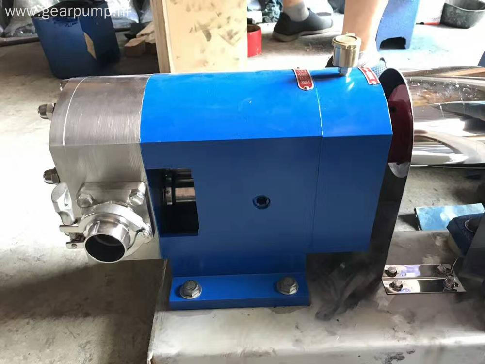 Sanitary rotary lobe pump to transfer chocolate paste