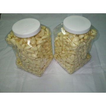 Fresh peeled garlic for wholesale