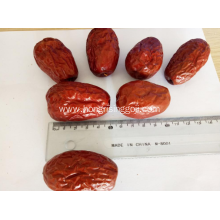 High Quality Sweet Jujube Chinese Dried Red Dates