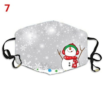 Fabric Face Mask Fashion snow Christmas protection