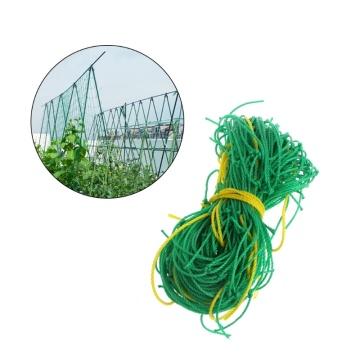 Hot Sale Garden Green Nylon Trellis Netting Support Climbing Bean Plant Nets Grow Fence