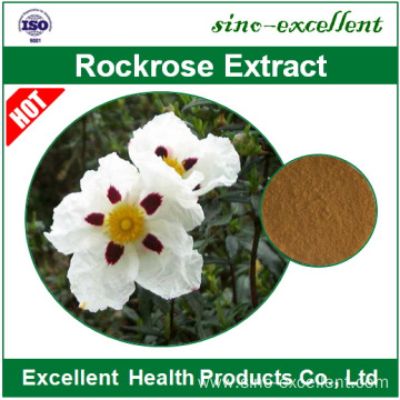 100% Natural Rockrose Extract Powder