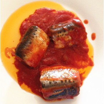Sardine Fish In Canned With Tomato Sauce