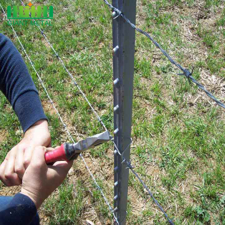 Big Farm 8ft Galvanized T Fence Steel Post