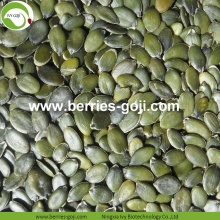 Factory Supply Hot Sale GWS Pumpkin Kernels