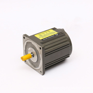 15W 50/60Hz Reversible AC Gear Motor