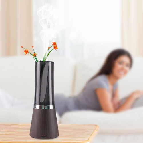 Quietest Aromatherapy Essential Oil Diffuser 7 Colors Light