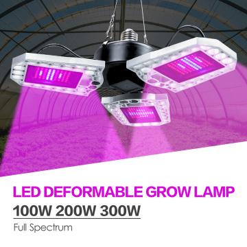 LED Plant Grow Light E27 Waterproof Phyto Lamp 100W 200W 300W Seedling Fito Lamp LED Full Spectrum Flower Seed Growing Tent 220V