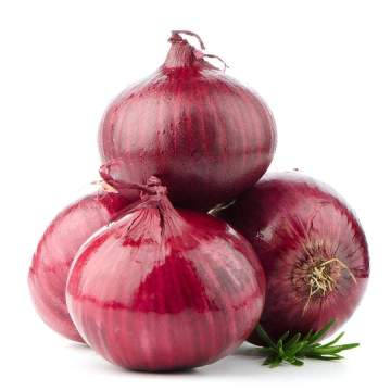 fresh small size red onion