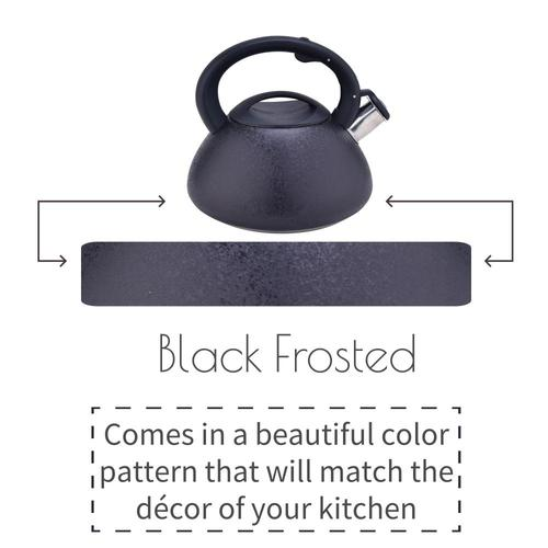 Black Frosted Stainless Steel Stovetop Teapot