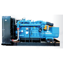 PUSH-Y series gas generator set