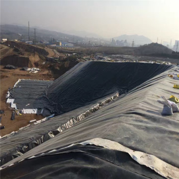 Best-selling 1.0mm HDPE Geomembrane for Dam Liner