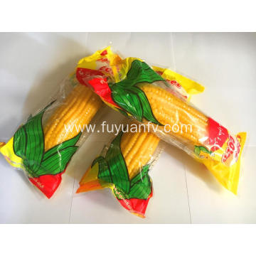 High Quality Good Tasty Sweet Fruit Corn