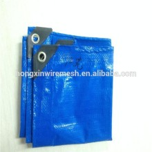 PE Tarpaulin With All Kinds Of Specification