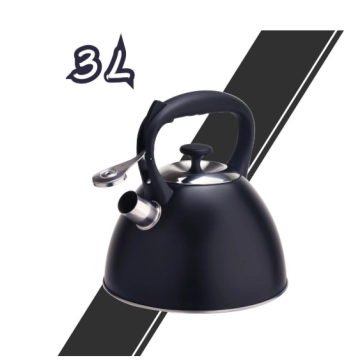 Stainless Steel Tea Kettle with black coating