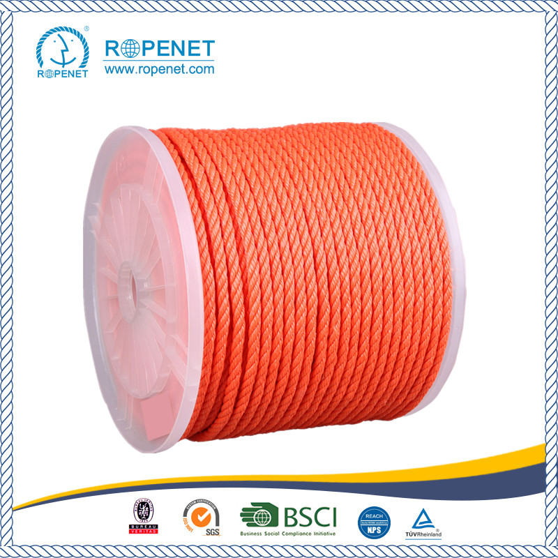 High Stregth Yellow Polyproplene Rope for sale