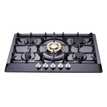 5 Burners Gas Stove Built In
