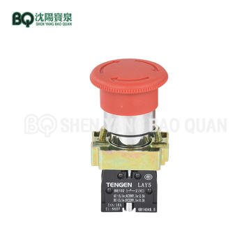 LAY5 BE102 Emergency Stop Button for Building Hoist