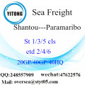 Shantou Port Sea Freight Shipping To Paramaribo