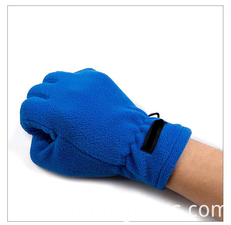 Fleece Gloves 1