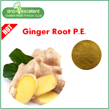 Ginger root extract Gingerols 1%-5% HPLC