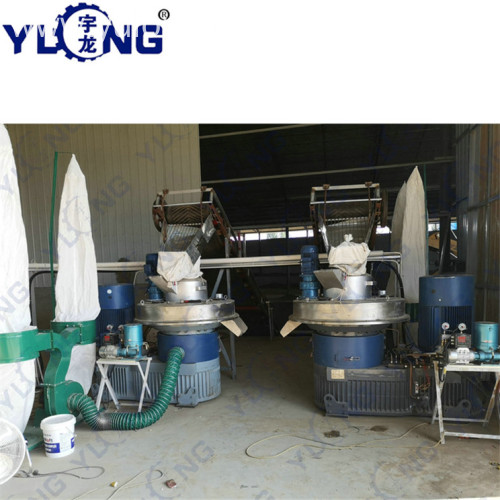YULONG XGJ560 pellet machine for poplar wood