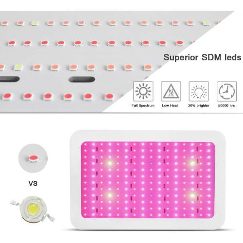 The Led grow light for Plant