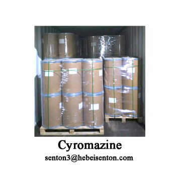 Agricultural Pesticides Cyromazine Insecticide