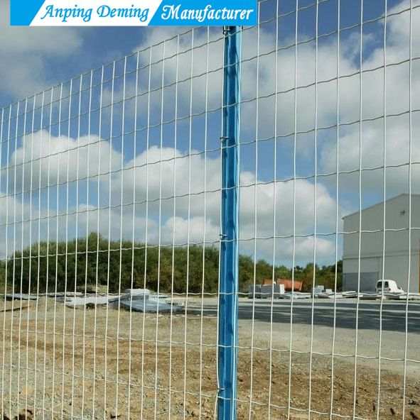 High Quality Galvanized and PVC Coated Euro Fence
