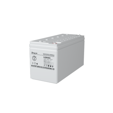 Valve-regulated Sealed Lead Acid Battery (12V24Ah)