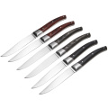 Garwin mix colors handle steak knives