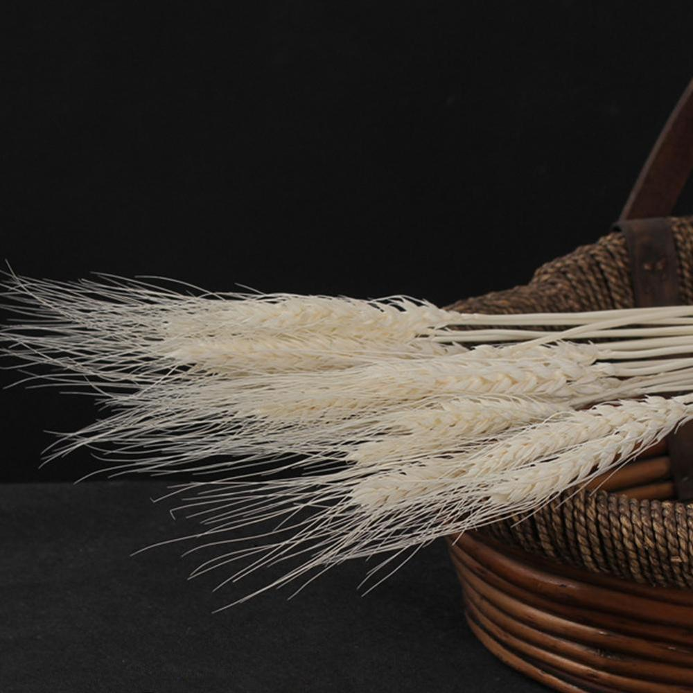 25pcs Natural Dried Flower Wheat Ears Bouquet for Wedding Party Decoration DIY Craft Home Decor Scrapbook Wheat Branch Props