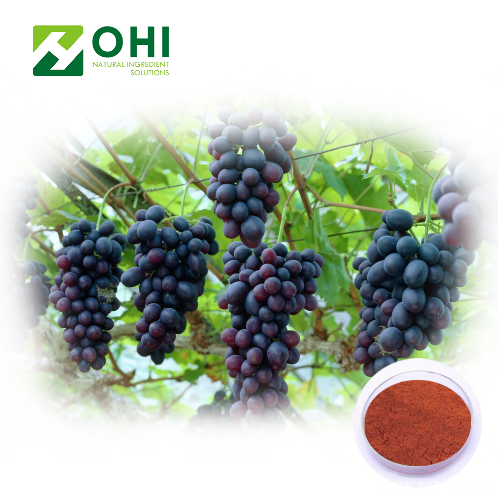 Grape Skin Red Color Natural Pigment