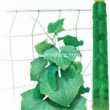 UV treated cucumber knotless trellis netting